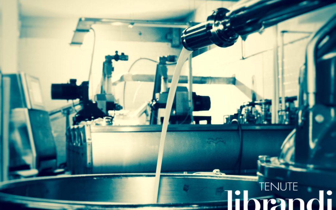 Biologische extravergine olijfolie van Tenute Librandi Pasquale